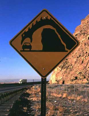 Cars, driving and traveling funny pictures