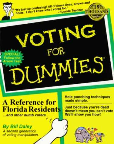 Voting for dummies pic from Politics